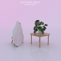 Aspen King - Say Something