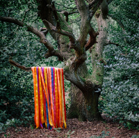 James Holden and the Animal Spirits - The Animal Spirits