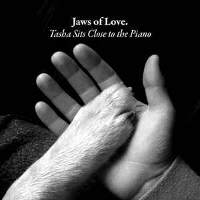 Jaws Of Love - Tasha Sits Close To The Piano