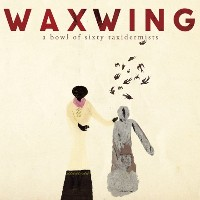 Waxwing - A Bowl of Sixty Taxidermists