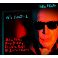Billy Mintz - Ugly Beautiful